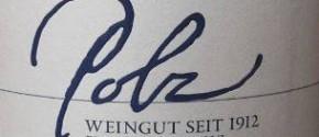Polz Sauvignon Blanc