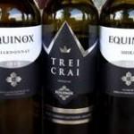 Degustácia vín v Južnom Moldavsku (degustované v auguste 2016)
