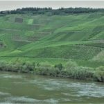 Degustácia svetových rizlingov z oblasti Mosel (Nemecko) – časť 1: Reichsgraf von Kesselstatt